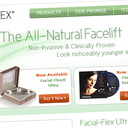 Facial Flex: Web Architecture